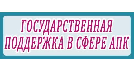 ГОСУДАРСТВЕННАЯ ПОДДЕРЖКА В СФЕРЕ АПК